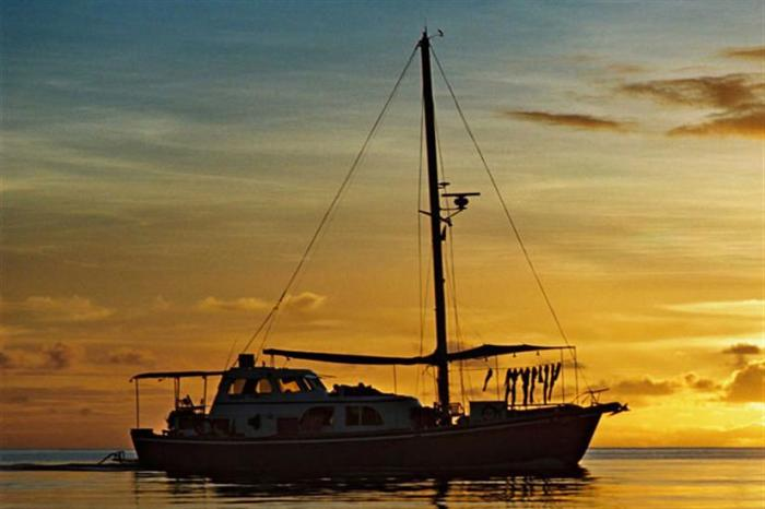 Thinking of doing some Palau diving? Read thisfirst.