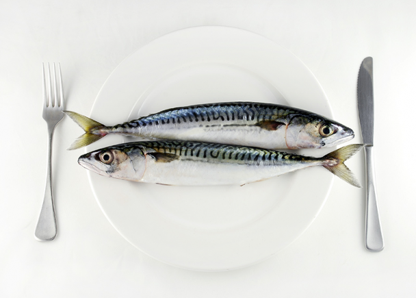 How the choices on your dinner plate affect the health of theocean.