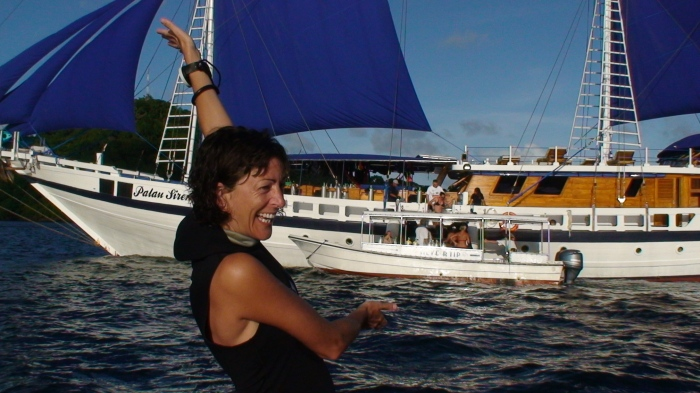 Diving Palau; A SharktasticAdventure