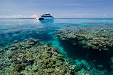 Dive the Great Barrier Reef AND have money left over to see everything else Australia has to offer? Yes please!